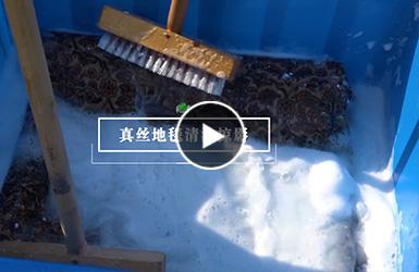 波斯真丝地毯清洗及修补服务